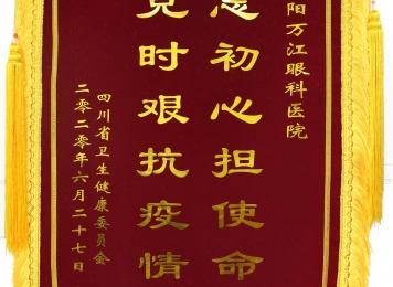省卫生健康委颁授锦旗:不忘初心担使命  共克时艰抗疫情 及感谢信