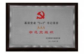 """""""3+2""""书记项目示范党组织"""